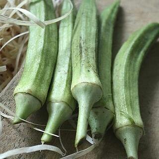 raw okra recipes